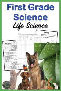 link to a first grade life science unit
