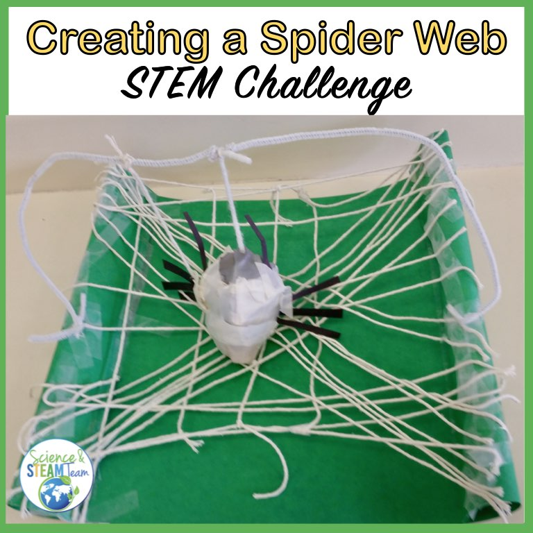 to show a spiderweb that students made