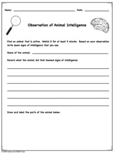 worksheet for recording observations