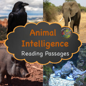 link to TpT shop for reading passages
