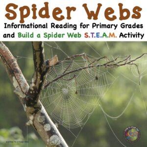spider web challenge on TpT