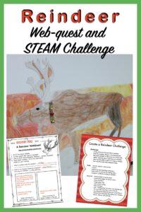 December STEM Activities: Webquest