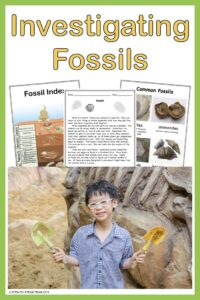 fossil resources in our TpT shop