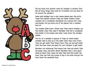 all about reindeer text