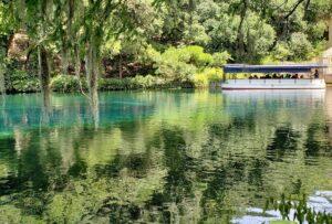 Spring Lake glass bottom boat tour