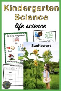 link to life science unit