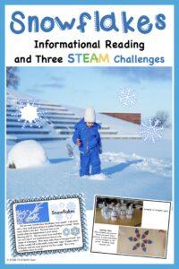 winter science - snowflakes