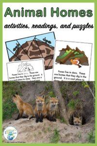 animal homes resource