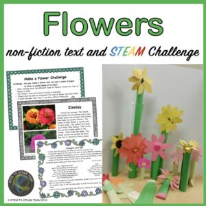 Mother's Day STEM