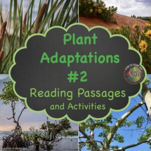 plant-adaptations-2