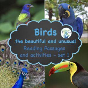 adaptations-and-habitat-readings