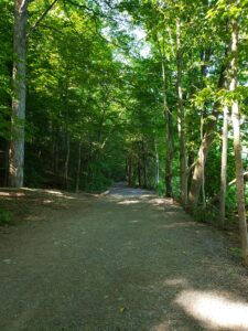 trail-around-green-lake