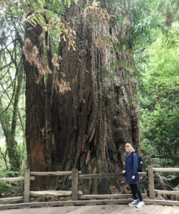 author-next-to-a-coastal-redwood