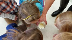 students looking at butter after completing thanksgiving science experiment