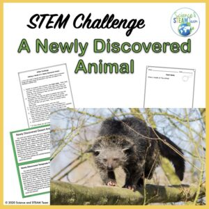 How do animals adapt to their environment STEM challenge